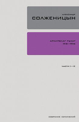 Архипелаг ГУЛАГ. Книга 1
